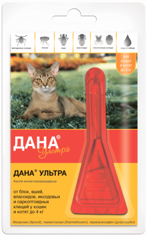 Dana ® Ultra 4 kg gacha bo'lgan mushuklar va mushukchalar uchun